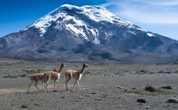 Le Chimborazo est le plus haut