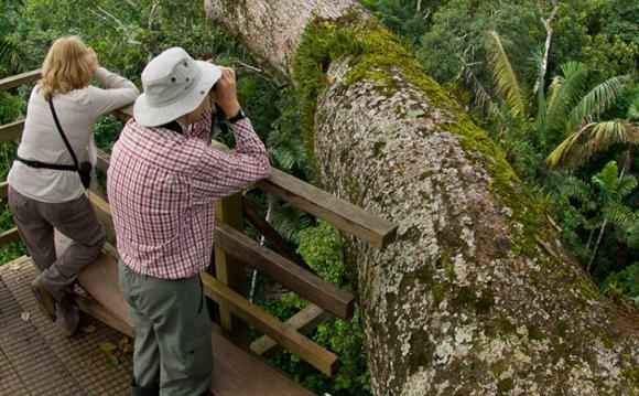 Birdwatching in Galapagos