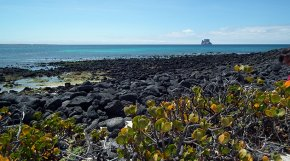 Islands of the Galapagos