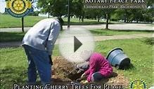 Rotary Club of Richmond, Virginia builds a peace park