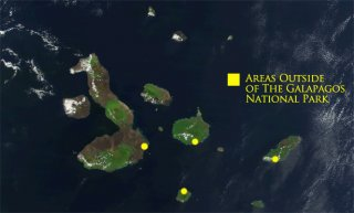 Which Islands to Visit in the Galapagos