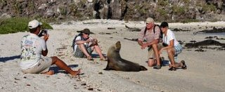 Wildlife Experiences in the Galapagos Islands